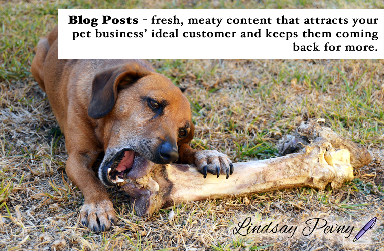 Fresh, meaty content is great for search engines, and keeps readers coming back for more. How often do you blog for your pet business?