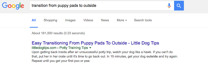 How I Got My Pet Blog Post To Rank First In Google Search
