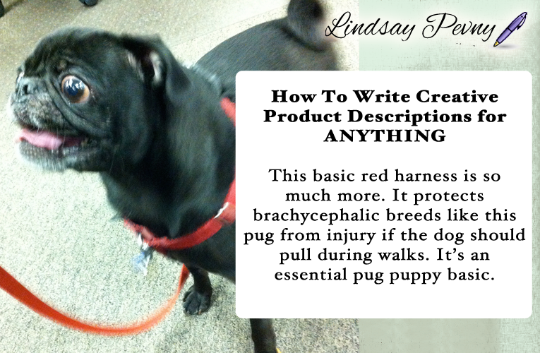 You can write a creative product description about anything - for example, this basic red harness. Descriptions never have to be boring!